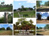 Fazenda no Paraguai 500 hectares ou 206 Alqueires Paulista - Puerto Sastre - PY
