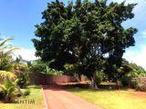 Chácara em Alvorada do Sul Lote com 1.997,5 m²