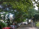 Apartamento a venda na Barra da Tijuca -RJ