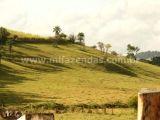 Fazenda Centenária em Itapira Pecuária, hotel fazenda ou lavoura