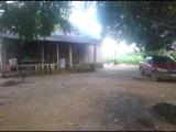 VENDO EXCELENTE CHÁCARA NA REGIÃO DE MACHADINHO DO OESTE (RONDÔNIA)